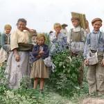 Polish berry pickers