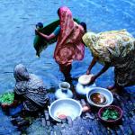 Saris filter out cholera