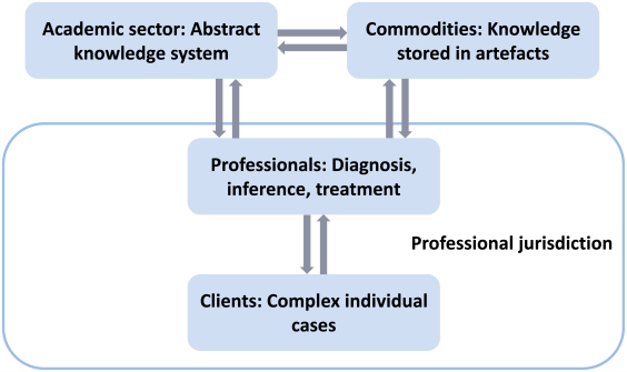 framework of mature profession