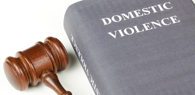 Domestic Violence lawbook