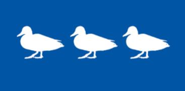 Duckies silhouette