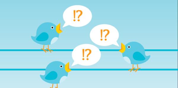 Twitter-ing birds