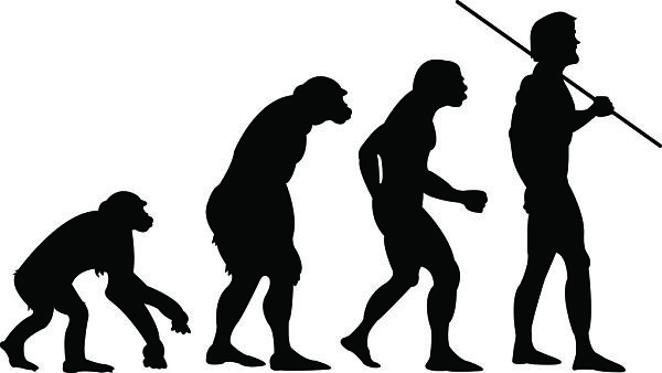 An economy is an evolutionary system