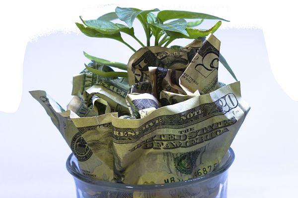Money for endowment